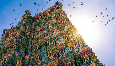 South India: The Dravvidian Adventure