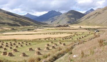 Dolpo - Tarap Valley